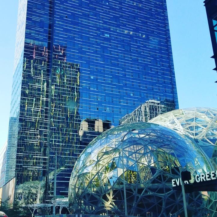 Amazon's Domes